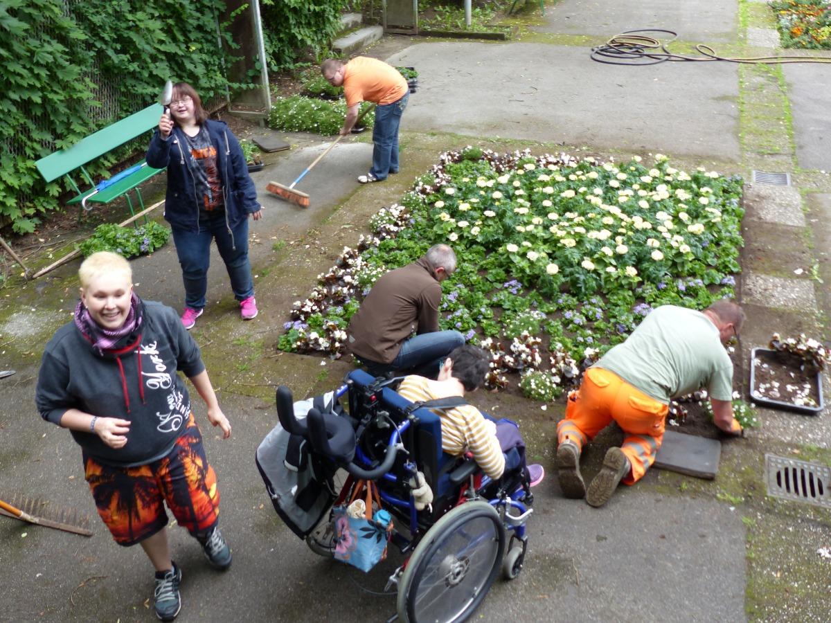 Das Team pflanzt die Blumen in das Beet