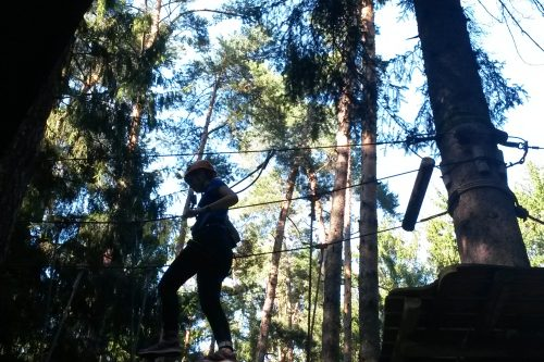 Im Hochseilgarten balanciert ein Besucher über Hindernisse