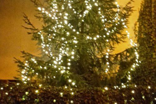 Ein mit Lichterketten geschmückter Weihnachtsbaum