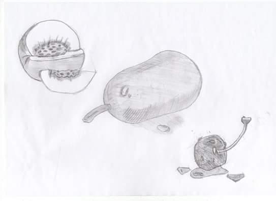 Bleistiftzeichnung eines Pfirsich, einer Birne und einer Kirsche